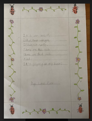Lexi poem