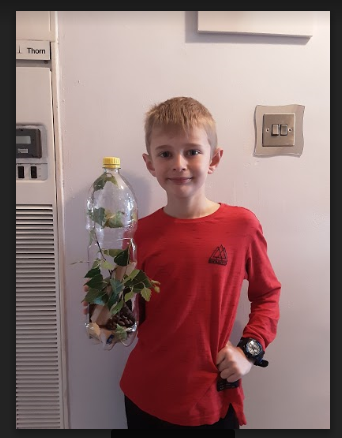 A Toby plant pot