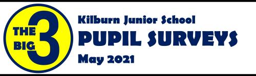 Big 3 Pupil Survey